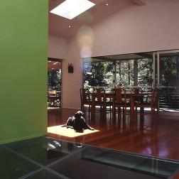 moss buswell_09 glass floor