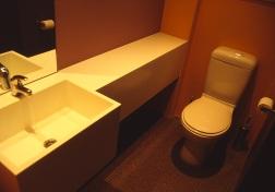 moss buswell_36 bathroom