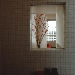 Perraton Apartment 25_zen view window from shower_Stephen Varady Photo ©