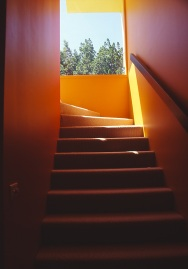 Green Residence 10_stair + framed view_Stephen Varady Photo ©