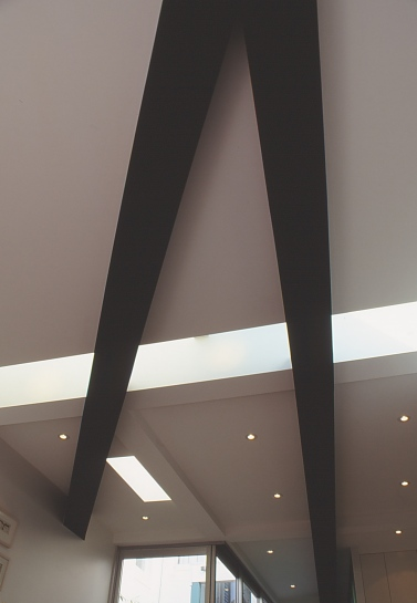 Pace McEwin Residence 21_sculptural beams 1_Stephen Varady Photo ©