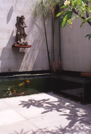 Pace McEwin Residence 26_glass fishpond_Stephen Varady Photo ©