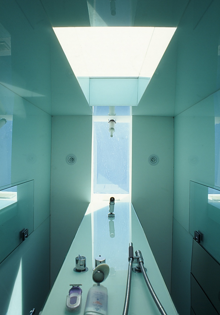 Pace McEwin Residence 46_en-suite ceiling + skylight_Stephen Varady Photo ©
