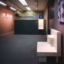 Catalyst Effect Office 03_Reception_Bart Maiorana Photo ©
