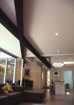 McEwin Pace Residence 08_black beams 1_Stephen Varady Photo ©