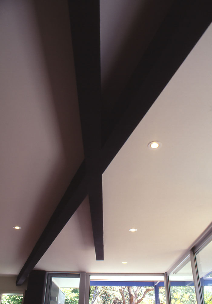 McEwin Pace Residence 11_black beams 3_Stephen Varady Photo ©