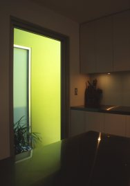 McEwin Pace Residence 20_kitchen lightwell 1_Stephen Varady Photo ©