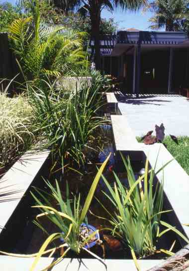 McEwin Pace Residence 38_fish pond 1_Stephen Varady Photo ©