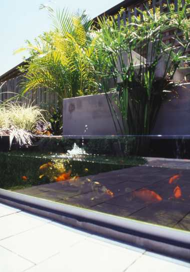 McEwin Pace Residence 39_fish pond 2_Stephen Varady Photo ©