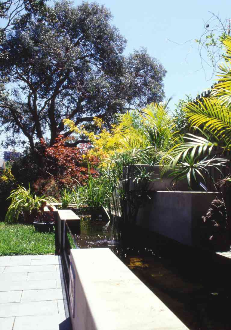 McEwin Pace Residence 42_fish pond 5_Stephen Varady Photo ©