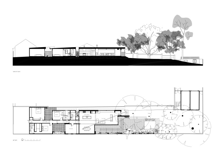 McEwin Pace Residence_plan+section_Stephen Varady Image ©