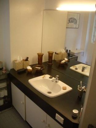Porter Apartment 12a_bathroom_before_Stephen Varady Photo ©
